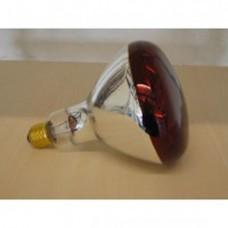 Infra Red Bulb - IR
